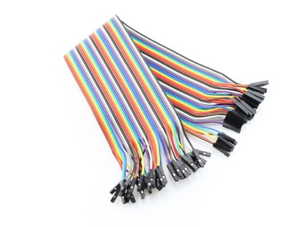 40 Pin Dual Female Splittable Jumper Wire - 200mm