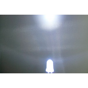 5mm Super Bright LED - White(10Pcs)